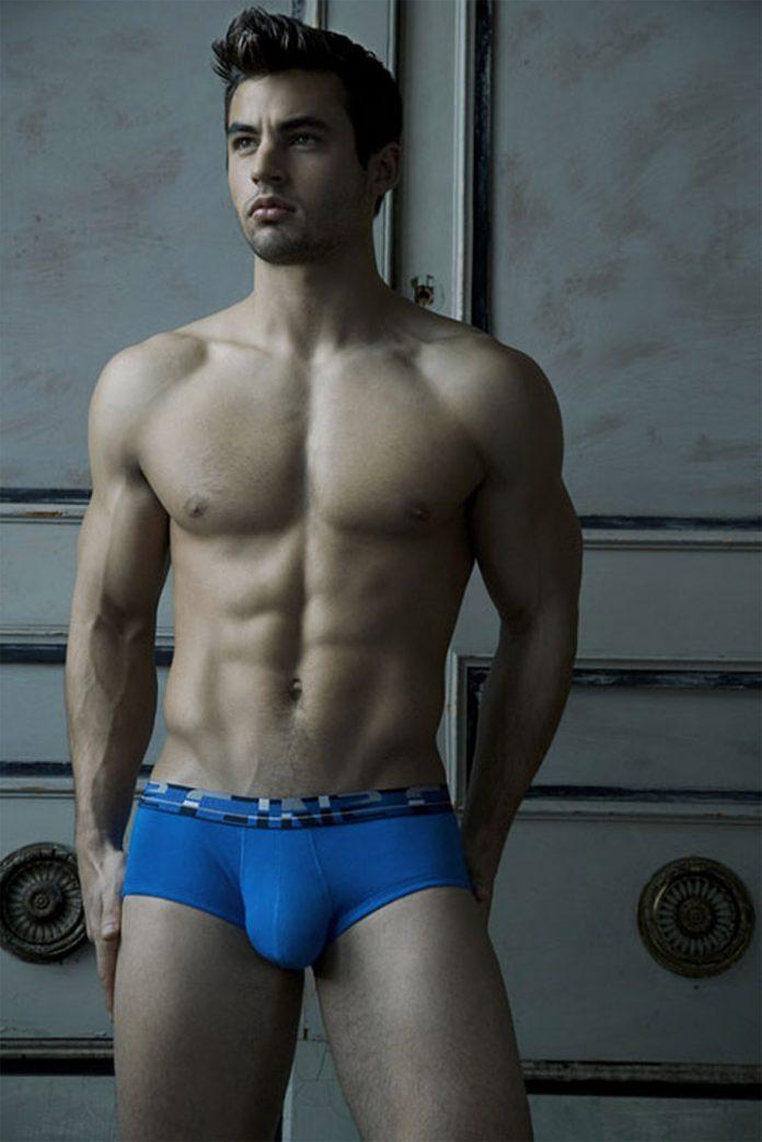 Blue Brief