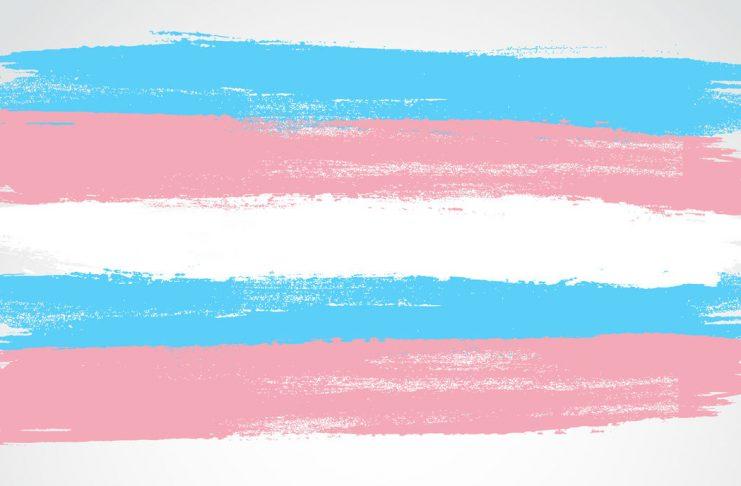 Transgender-Flagge